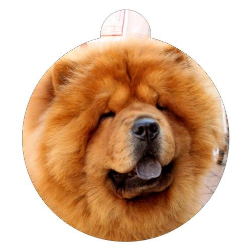 Chow Chow Breed ID Tag